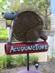 Sebastopol Community Acupuncture