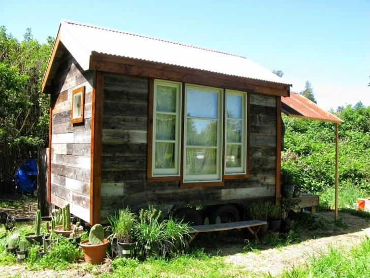 Wanted Adoreable Tiny House on Wheels Seeking Land 350 450month