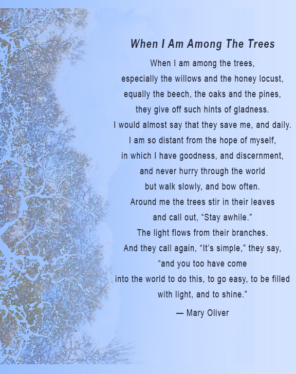 Name:  Among-Trees.jpg Views: 665 Size:  184.9 KB