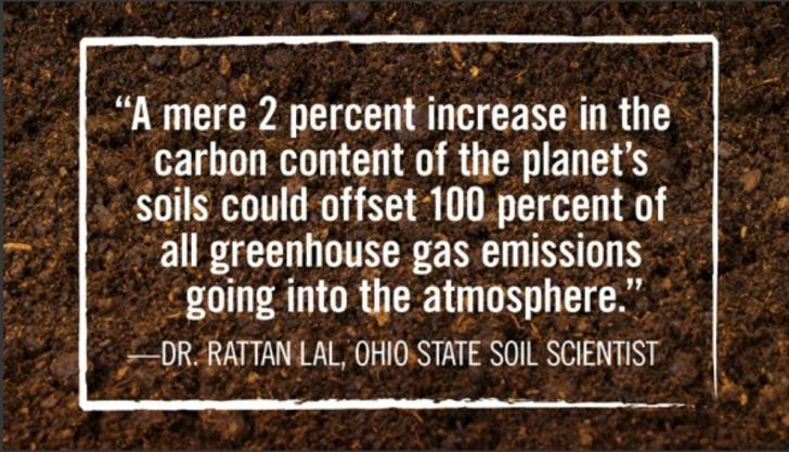 Name:  A mere 2 percent increase in the carbon content - Prof. Rattan Lal (small).jpg Views: 1099 Size:  73.3 KB