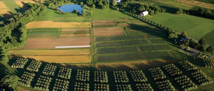 Name:  1-Carbon-Conversations-Agriculture.jpg Views: 1327 Size:  52.2 KB