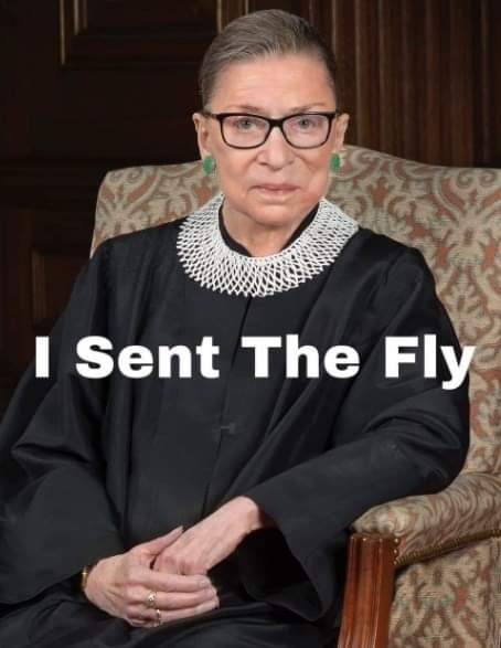 Name:  RBG, I sent the fly.jpg